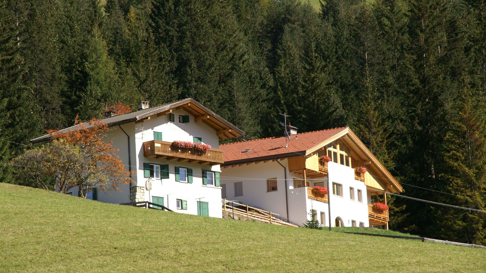 Image: Our apartments in San Cassiano